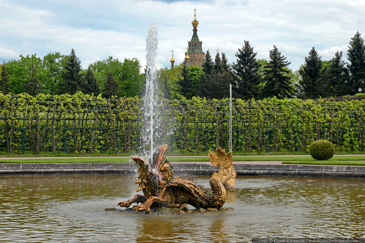 Peterhof. Little water. Many colors 46