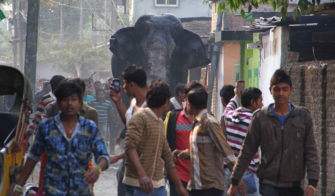 Rabid elephant 01