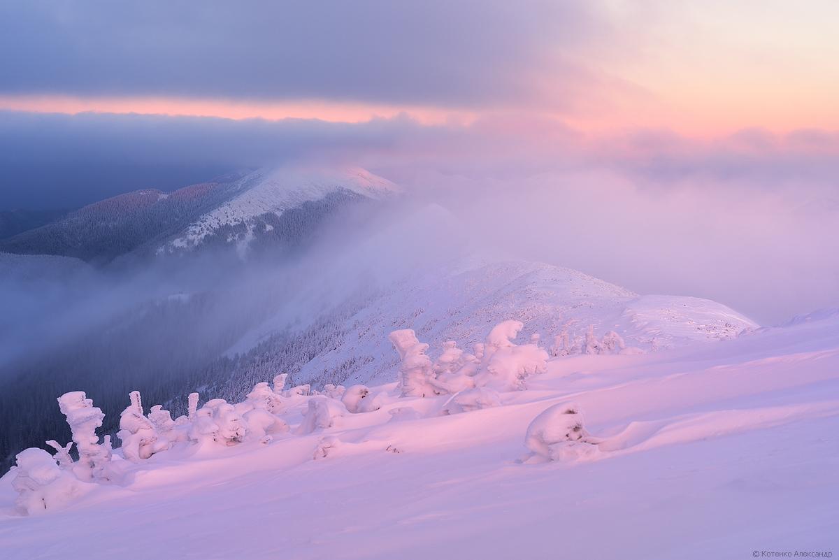 Winter in Gorgan 01