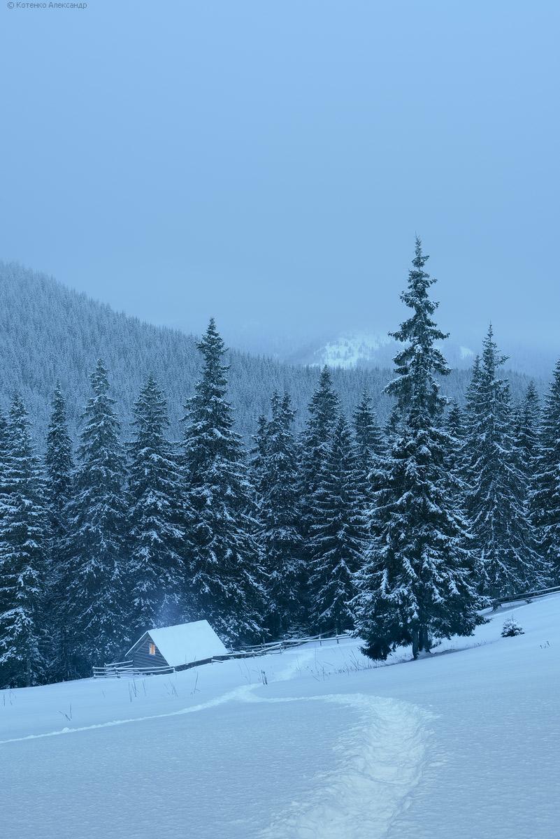 Winter in Gorgan 02