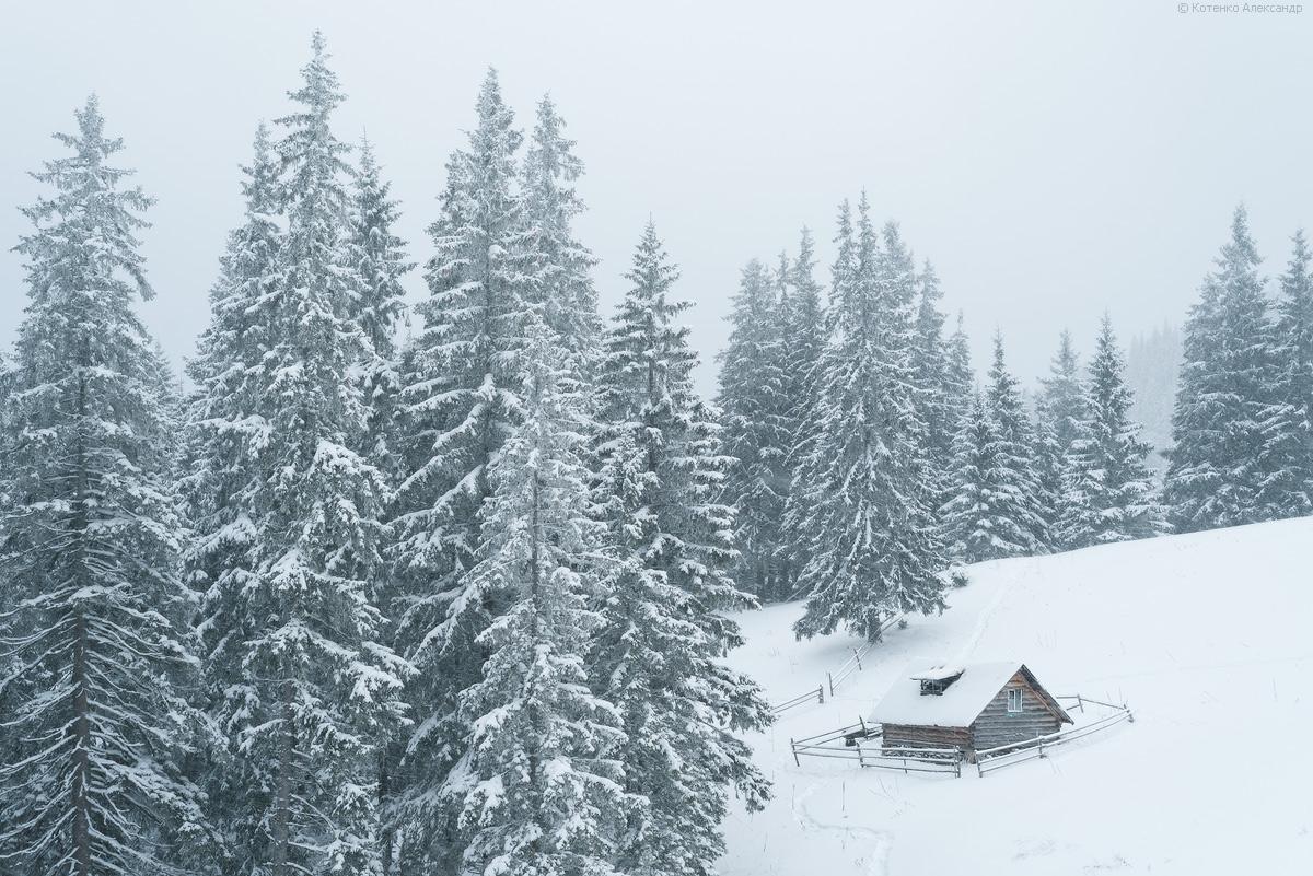 Winter in Gorgan 03