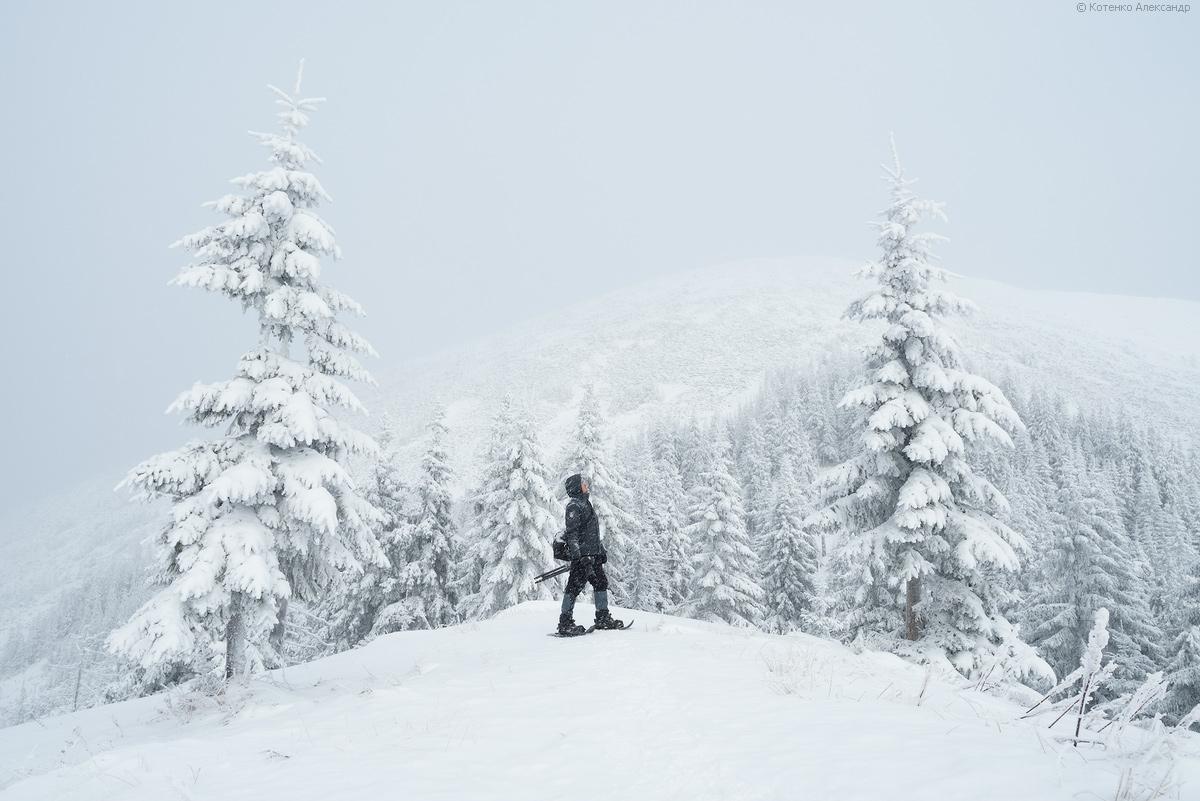 Winter in Gorgan 05