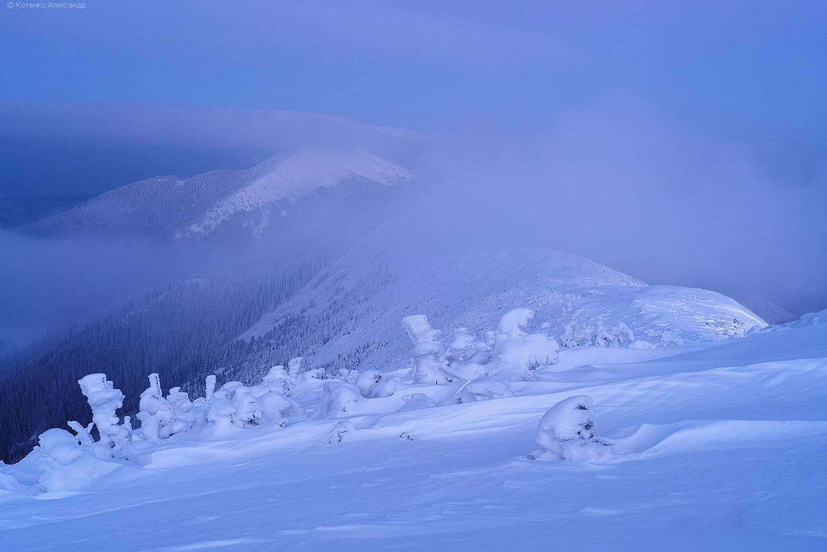 Winter in Gorgan 07