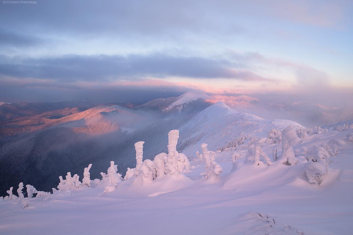 Winter in Gorgan 09