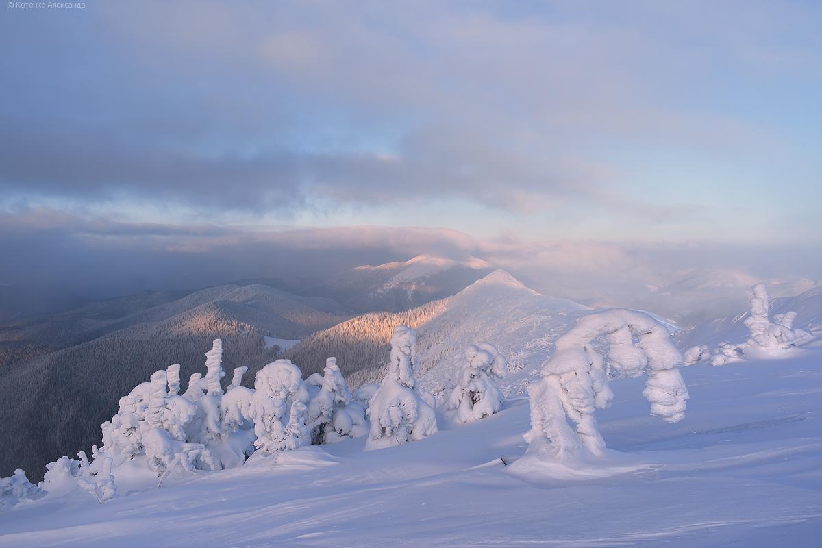 Winter in Gorgan 10