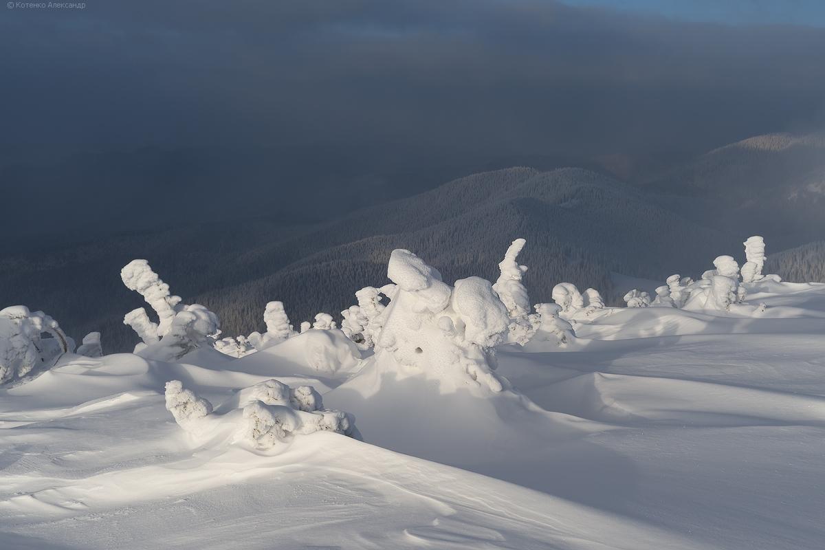 Winter in Gorgan 12