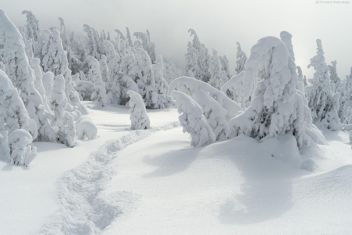 Winter in Gorgan 13