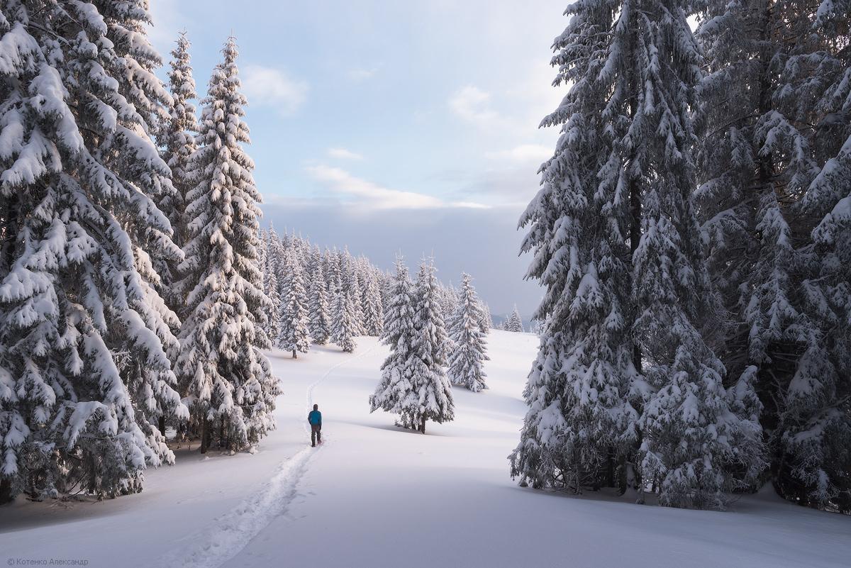 Winter in Gorgan 15