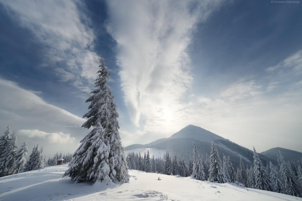 Winter in Gorgan 16