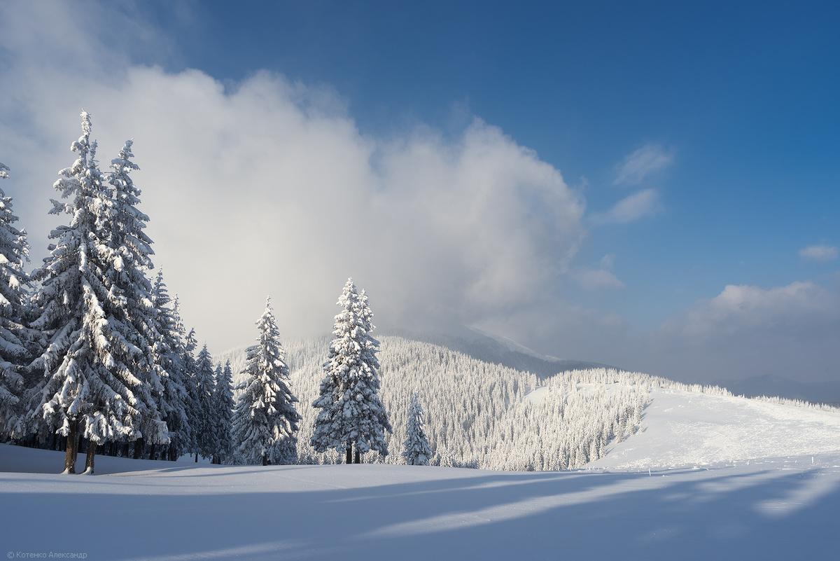 Winter in Gorgan 17