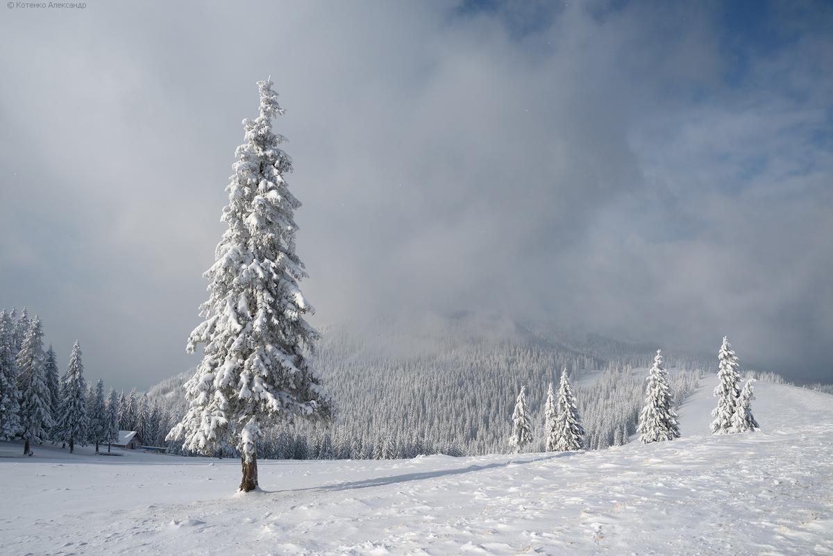 Winter in Gorgan 18
