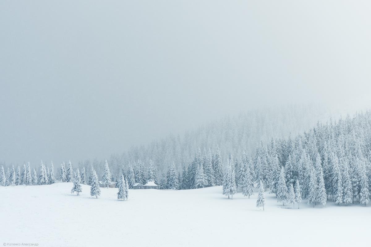 Winter in Gorgan 19