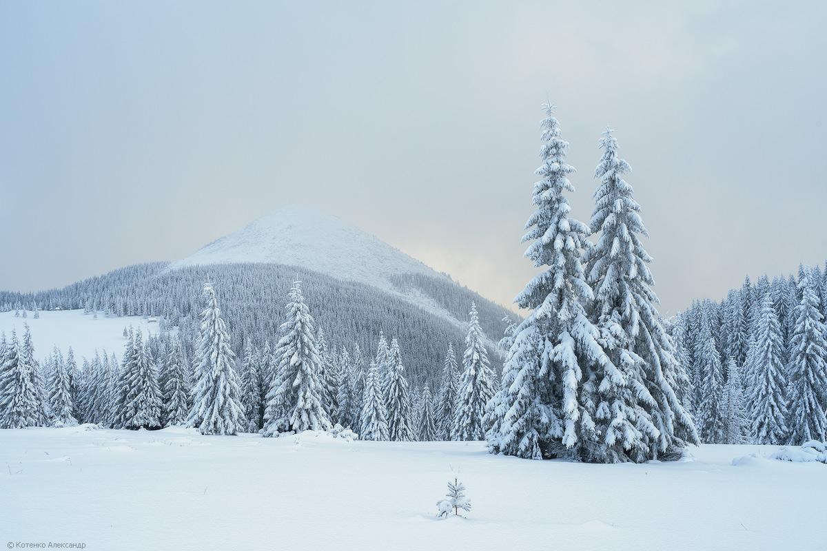 Winter in Gorgan 20