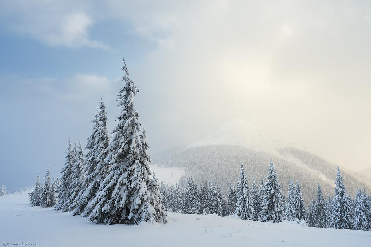 Winter in Gorgan 21