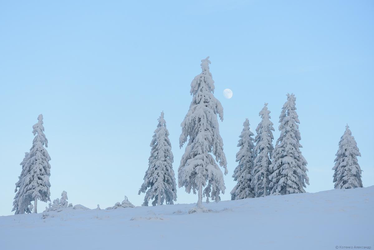Winter in Gorgan 22