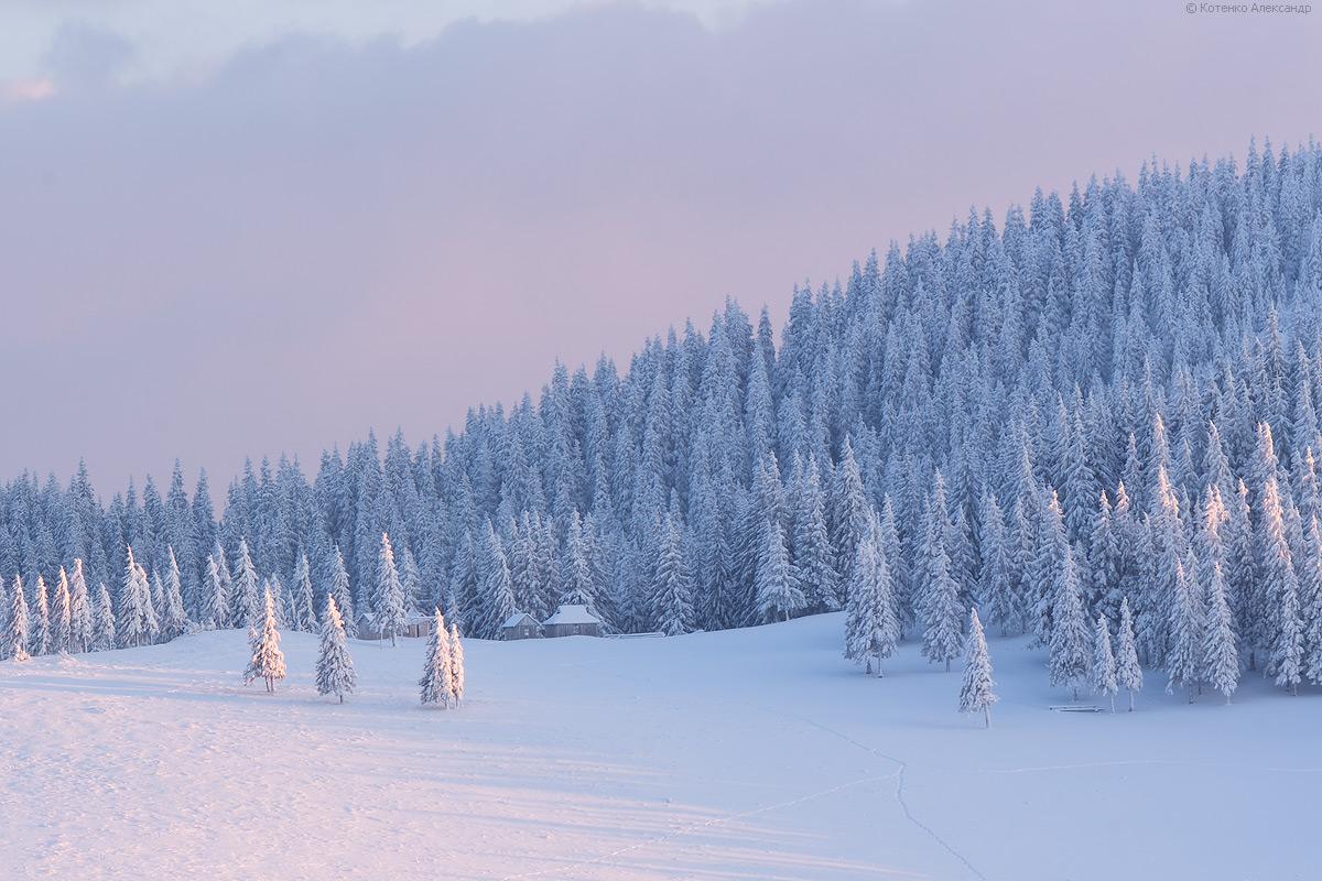 Winter in Gorgan 23