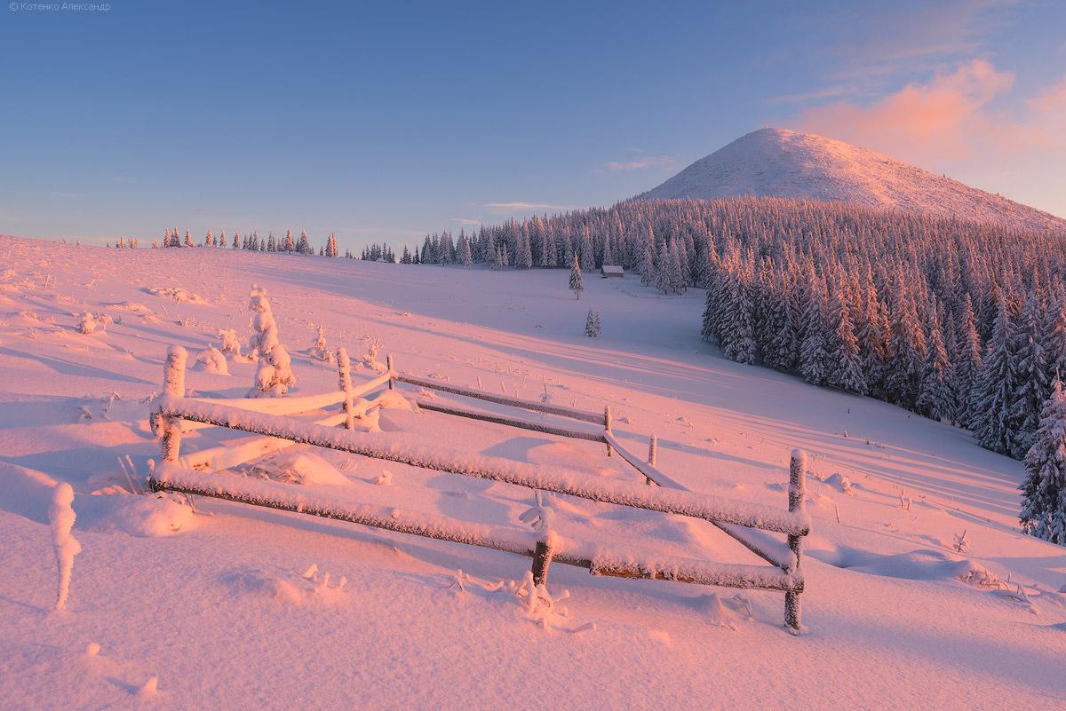Winter in Gorgan 25