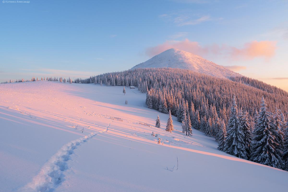 Winter in Gorgan 26
