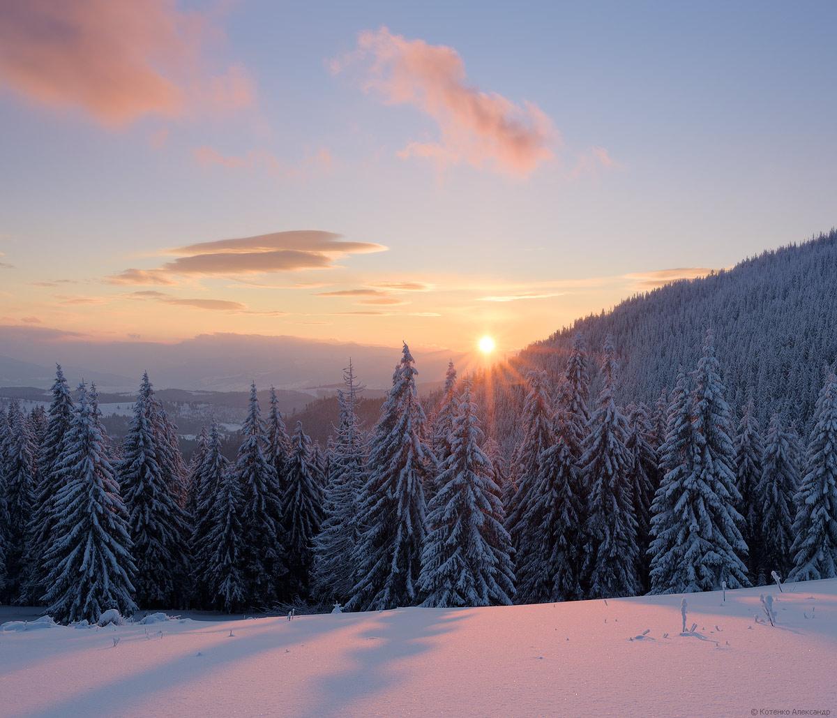 Winter in Gorgan 28