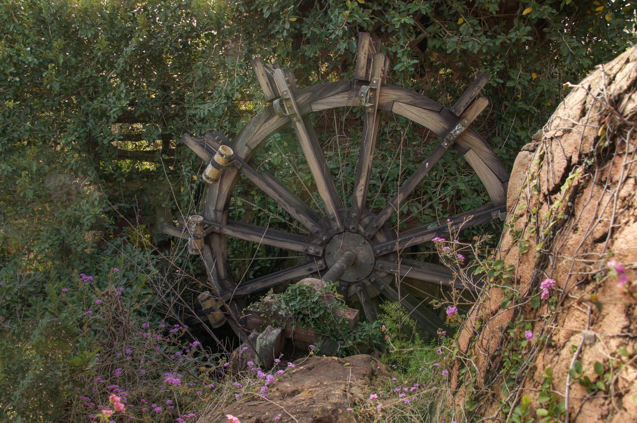 Abandoned Disney Park 04