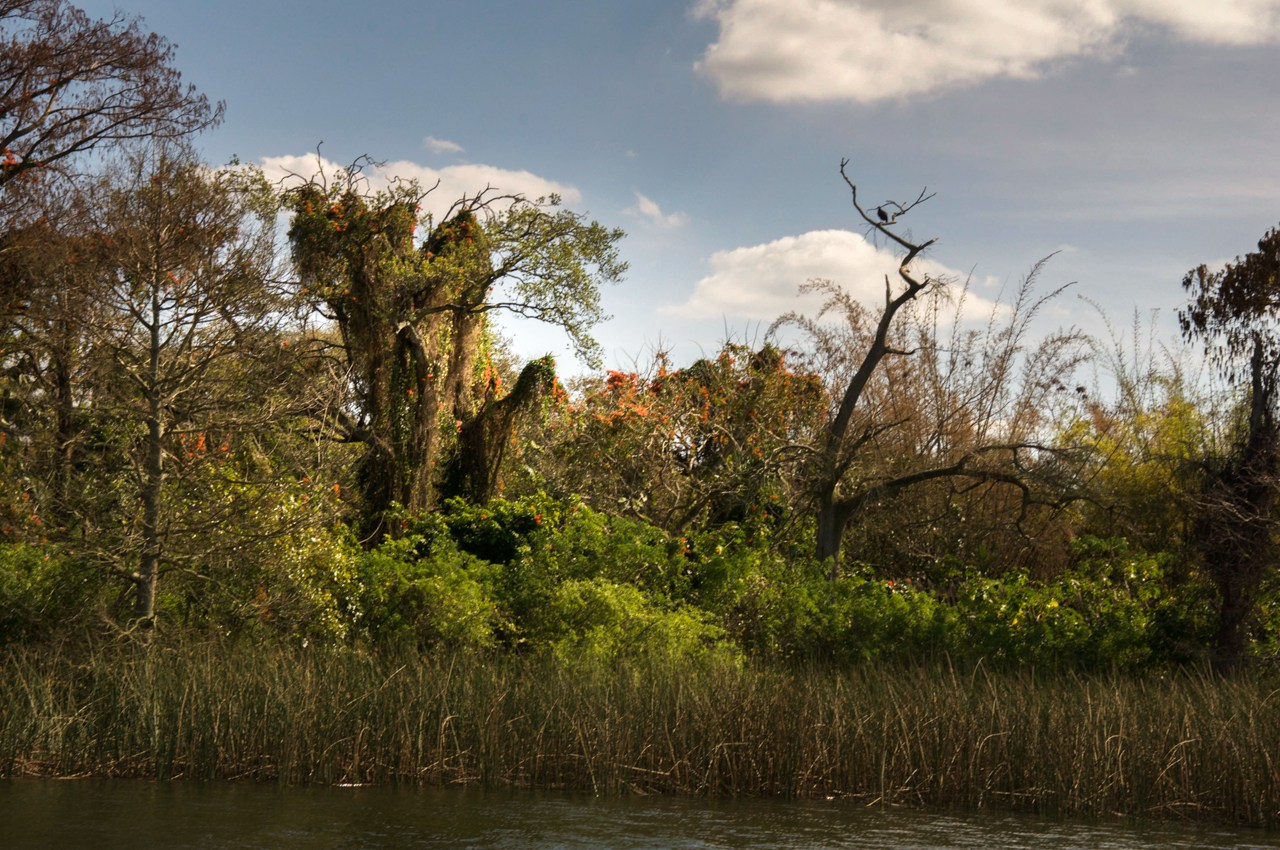 Abandoned Disney Park 11