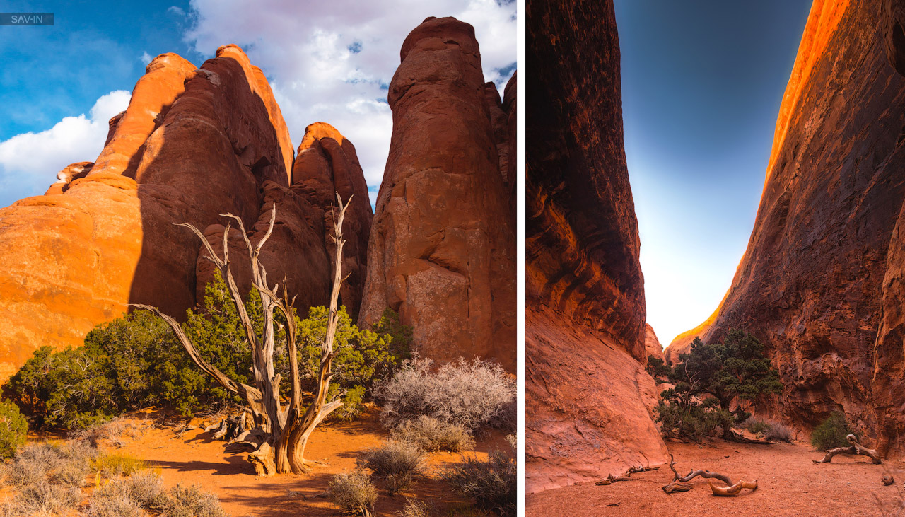 Arches national Park. From dusk till dawn 26
