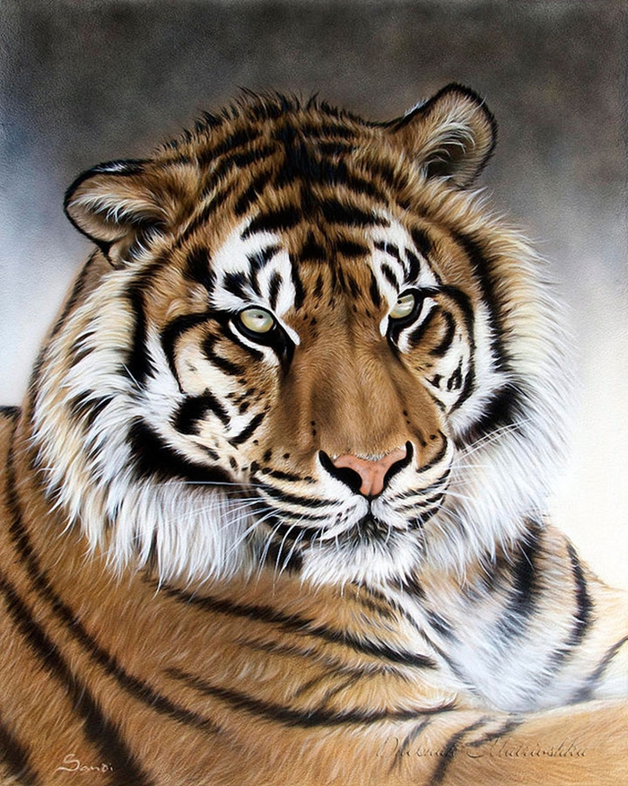 Awesome realistic drawings of animals 15