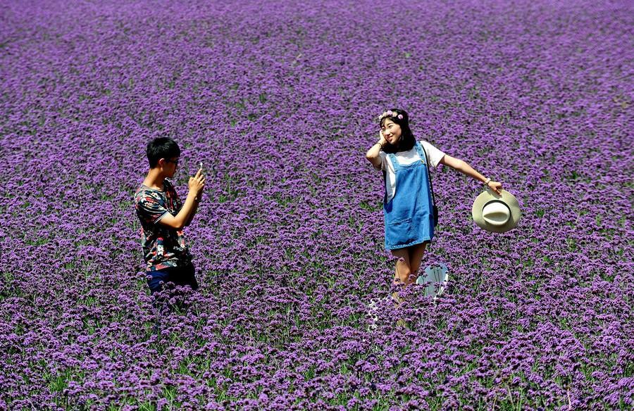 Beautiful and amazing photos 05