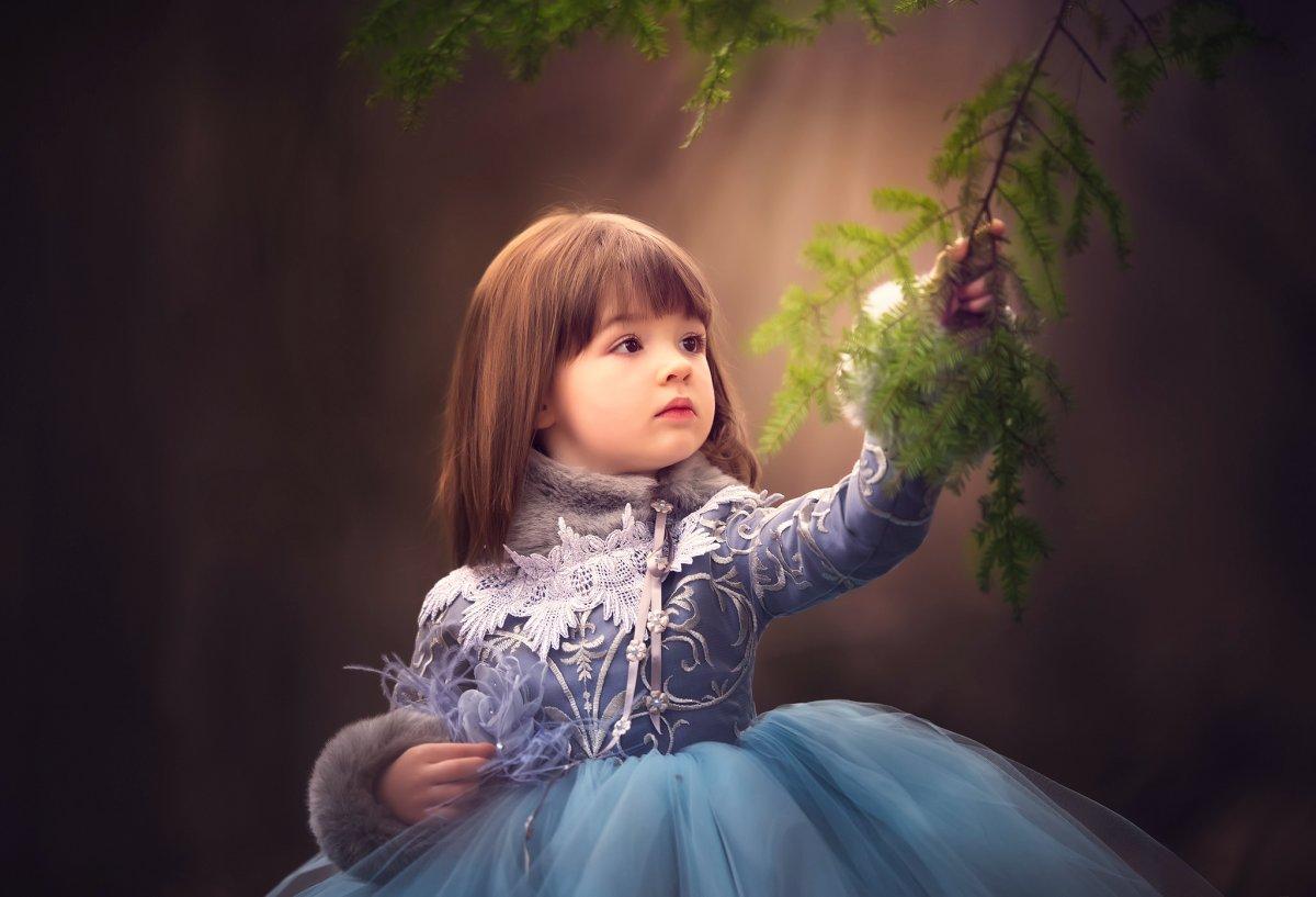 Beautiful photos on various subjects 23