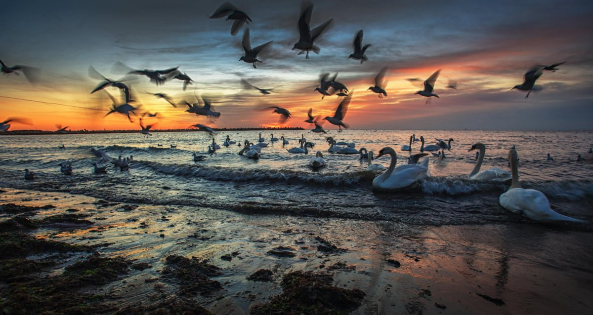 Beautiful photos with sunsets and sunrises 03