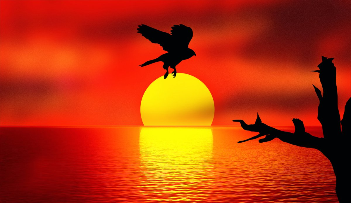 Beautiful photos with sunsets and sunrises 05