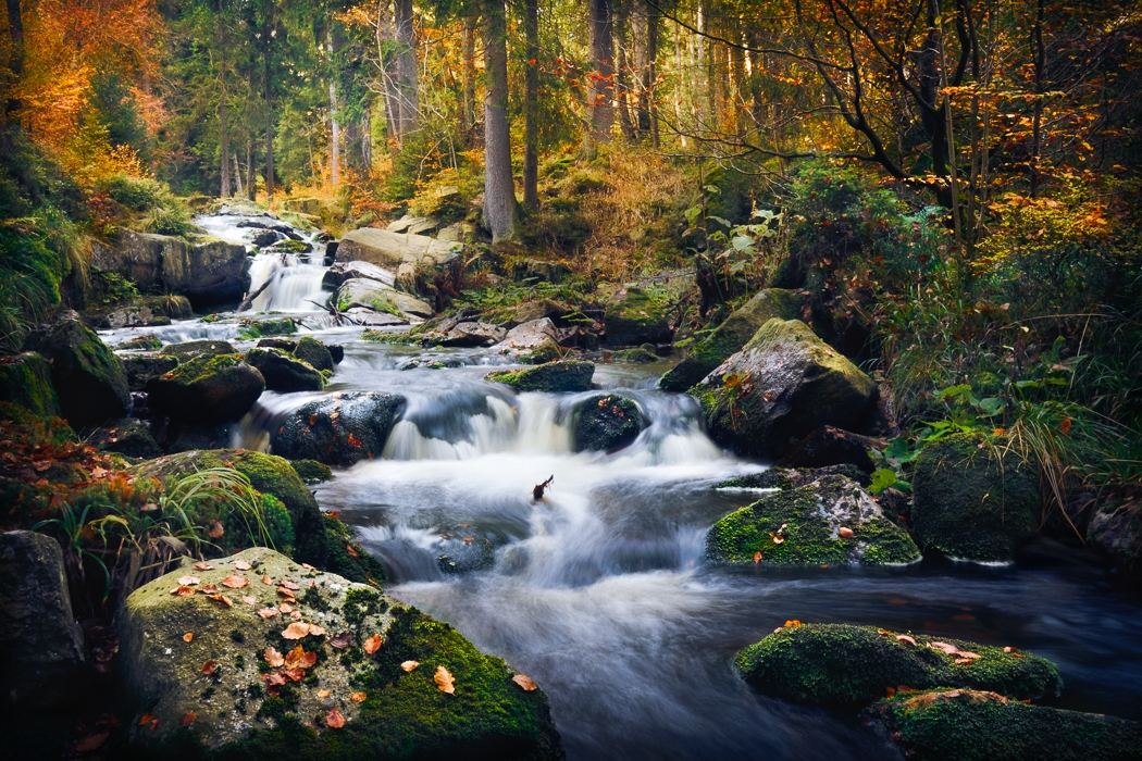 Beautiful pictures of landscapes 11