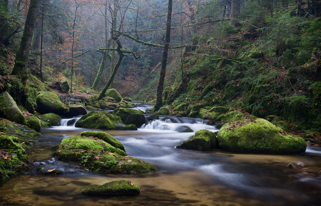 Beautiful pictures of landscapes 17