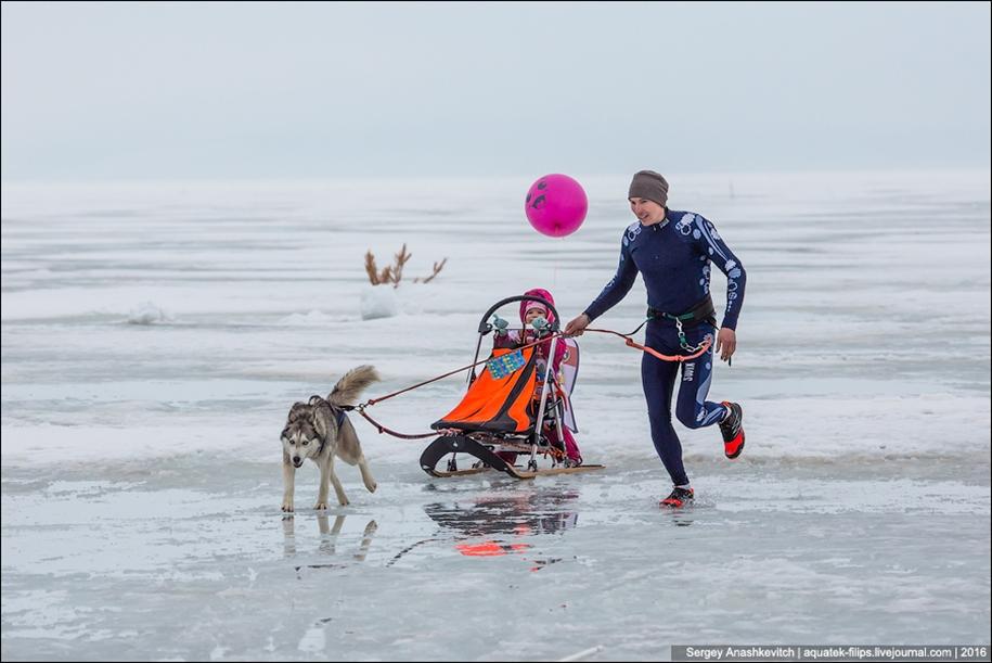Children and husky. Dog racing on wet ice 13