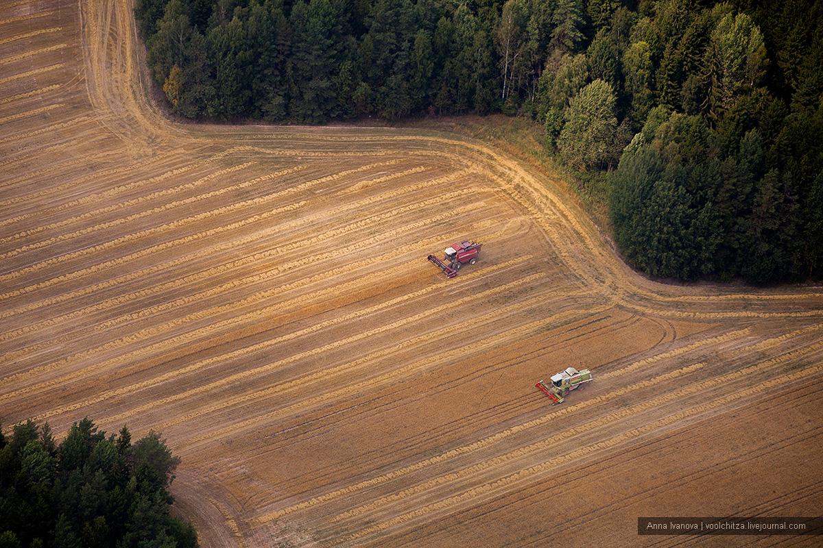 Geometric landscapes. Aseptrol Minsk region 10