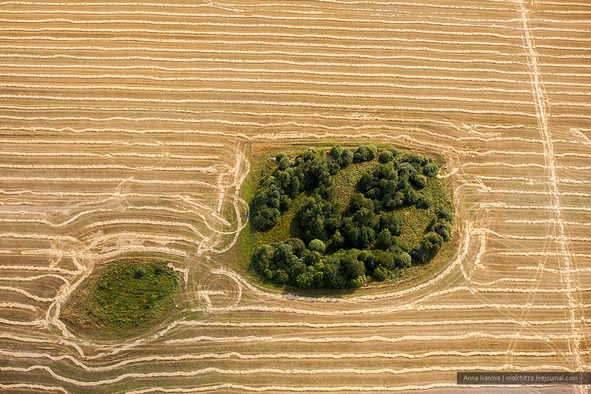 Geometric landscapes. Aseptrol Minsk region 17