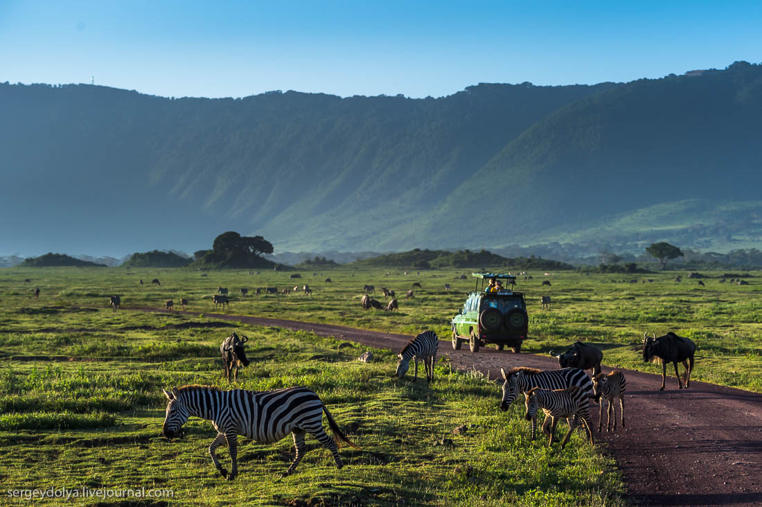 Ngorongoro is the best Safari in Africa 10