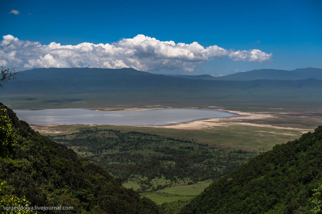 Ngorongoro is the best Safari in Africa 45