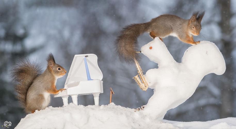 Protein-musicians 12