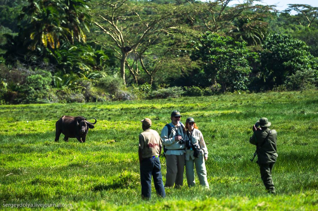 Safari in Tanzania 02