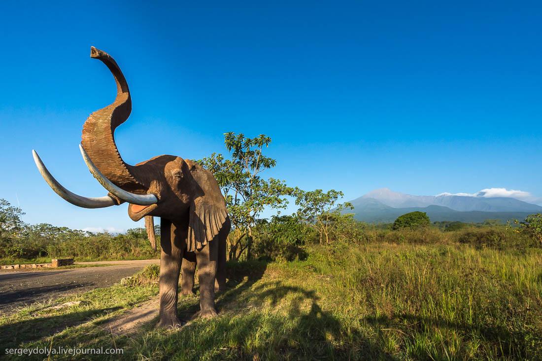 Safari in Tanzania 04