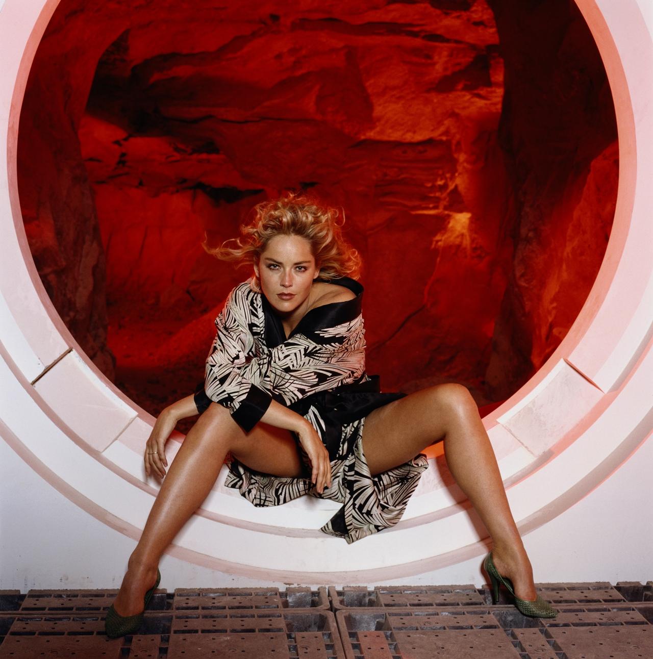 Sharon Stone 11