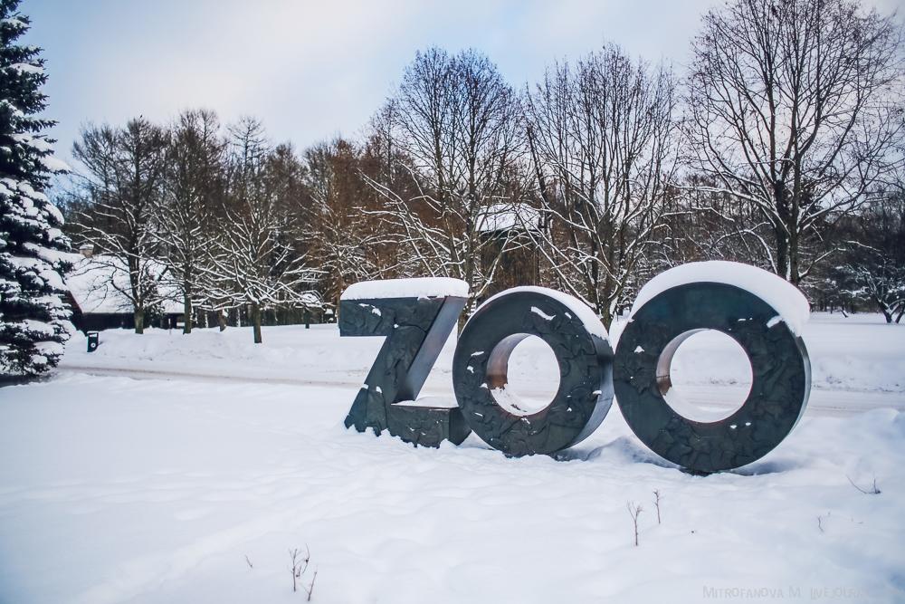 Tallinn zoo 03