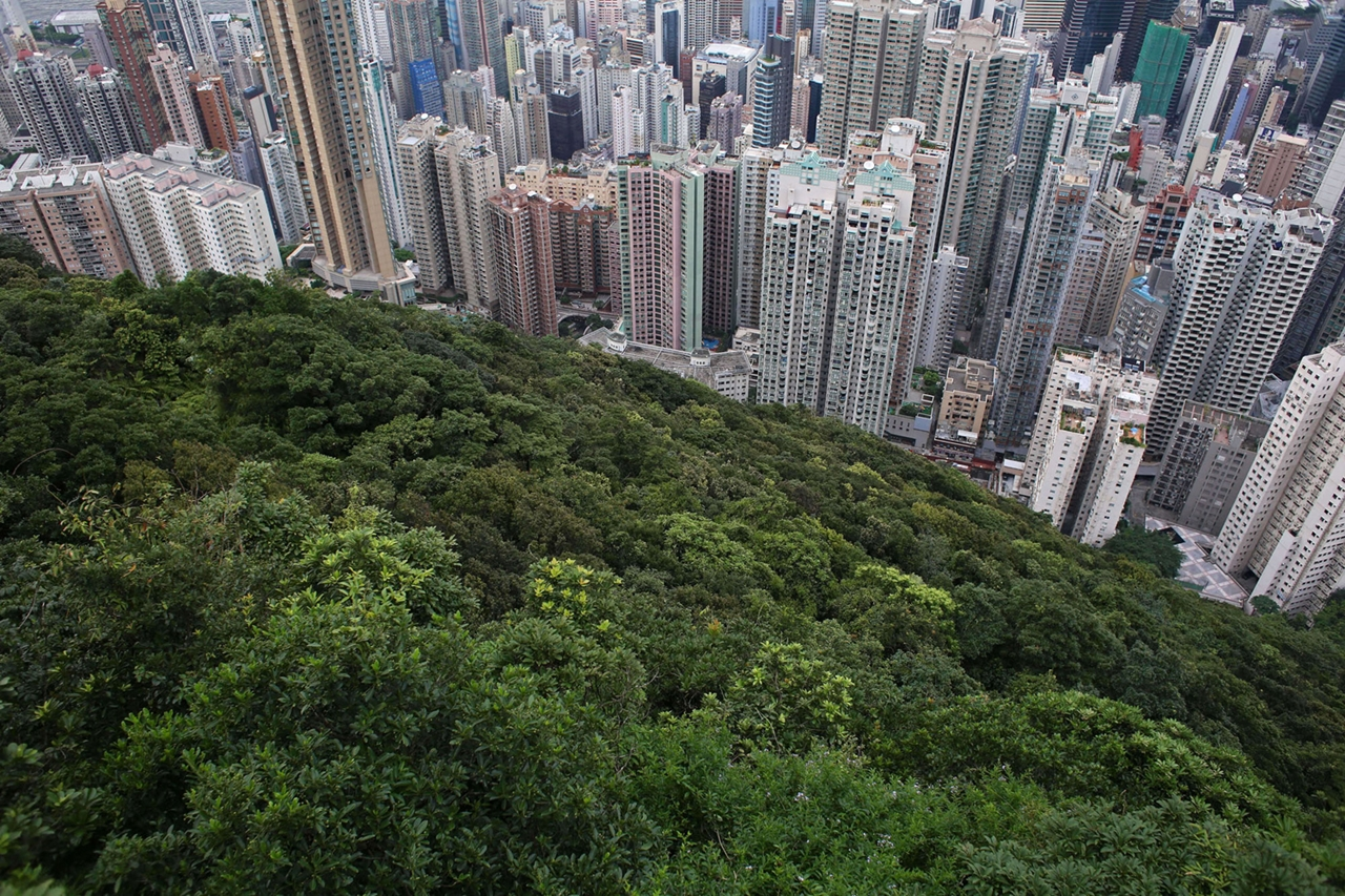 The Dizzying Cityscape of Hong Kong 11
