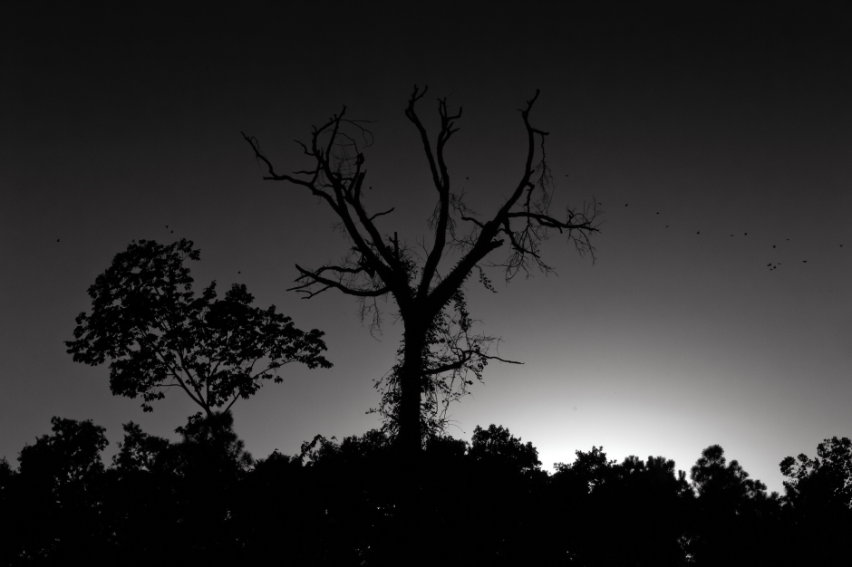 The art of black and white photography Enrique Pelaez 06