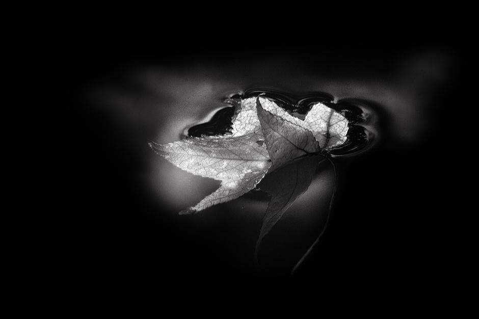 The art of black and white photography Enrique Pelaez 09