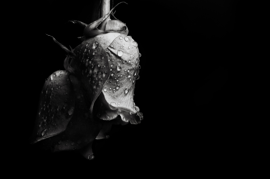 The art of black and white photography Enrique Pelaez 19