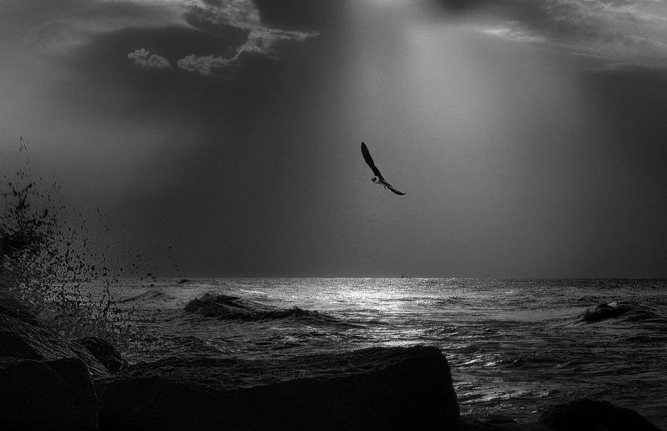 The art of black and white photography Enrique Pelaez 26