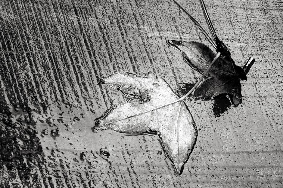 The art of black and white photography Enrique Pelaez 27