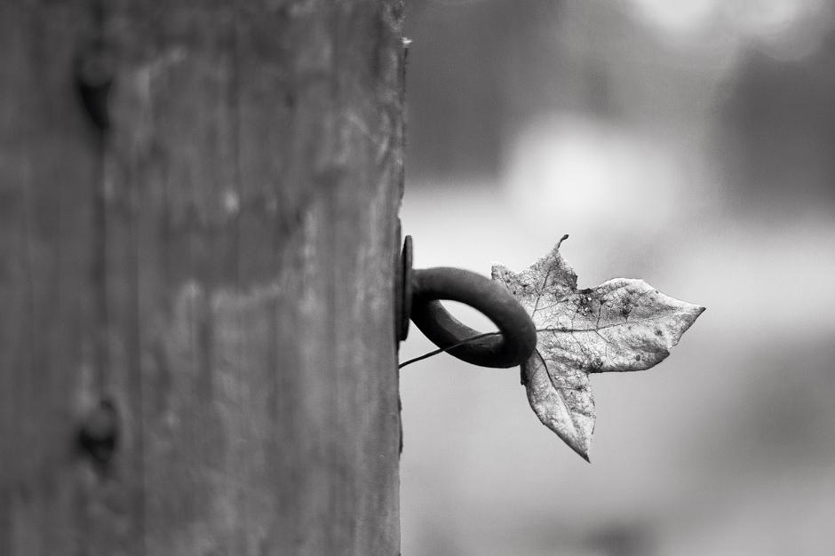 The art of black and white photography Enrique Pelaez 28